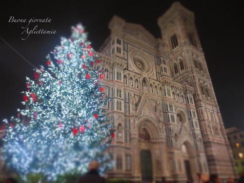 キラキラDUOMO のクリスマスツリー★あんな角度、こんな角度から_c0179785_46309.jpg