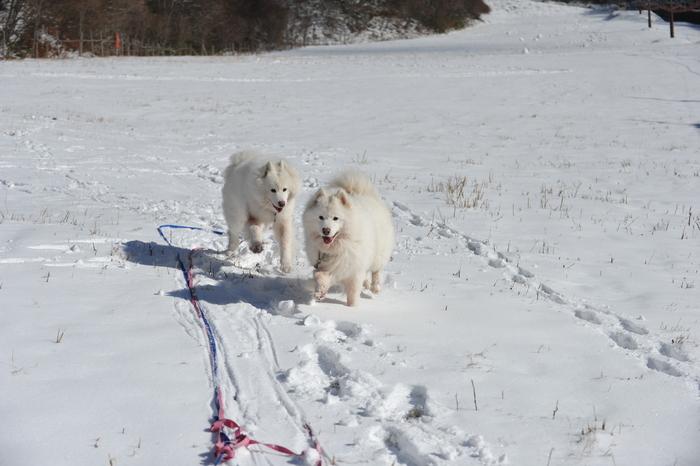 初冬の奥飛騨へ_a0049296_18311763.jpg