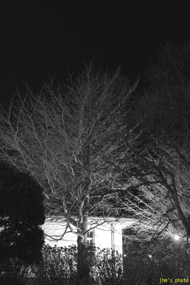 夕日の丘行きバス通りの夜_a0158797_10174432.jpg