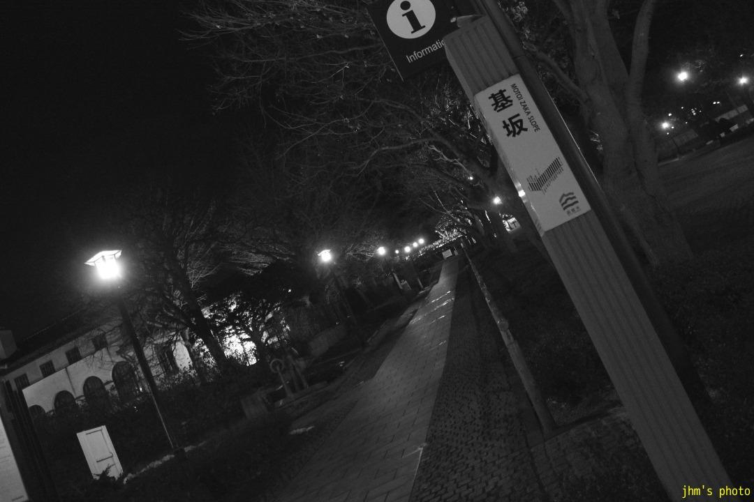 夕日の丘行きバス通りの夜_a0158797_10184490.jpg