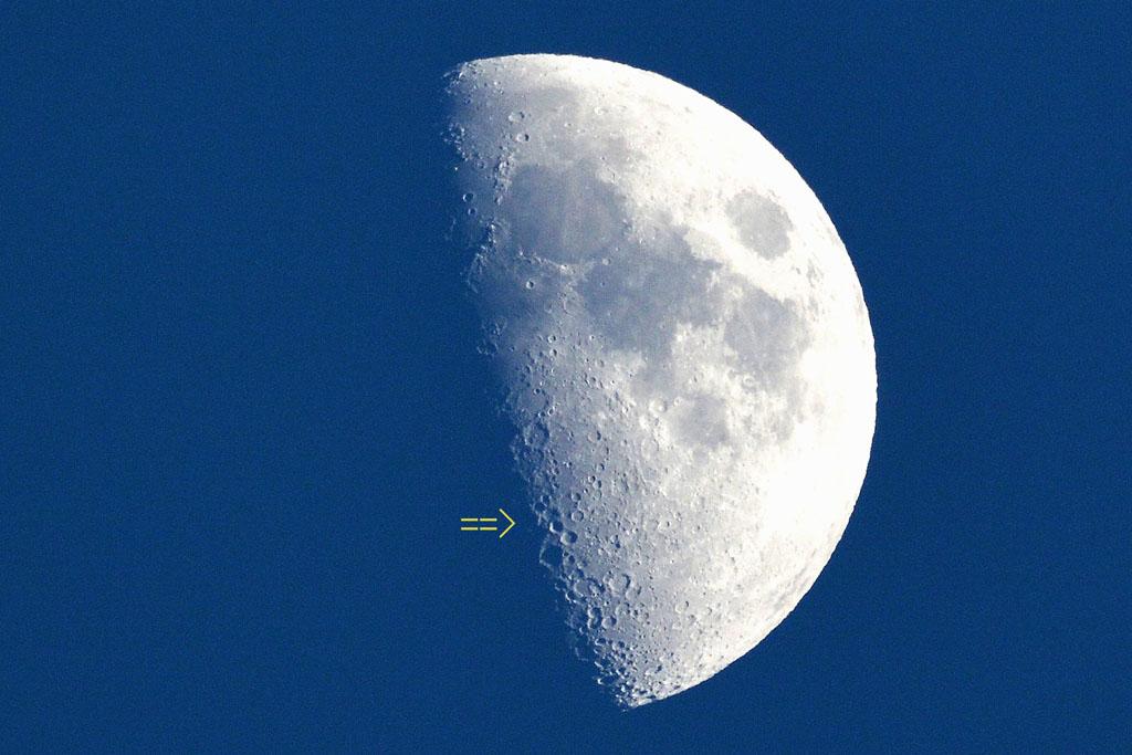 カワセミ天気が気になります/飛ぶタゲリ/早朝の空/月面X_b0024798_21103436.jpg
