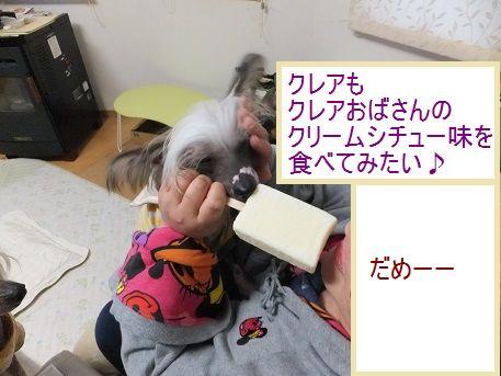 f0179203_1911329.jpg