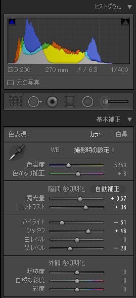 b0010915_2028506.jpg