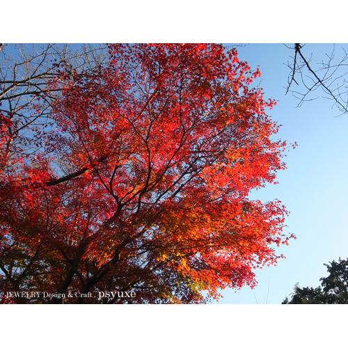 静岡県立美術館へ_e0131432_11445087.jpg