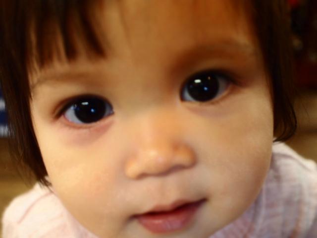 1歳になりました。_d0228193_10351545.jpg