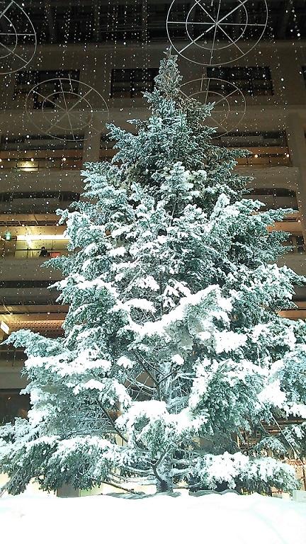 KITTEの雪景色_a0057402_22143719.jpg
