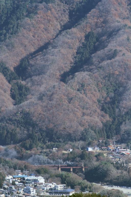 初冬の荒川鉄橋 - 2013年初冬・秩父 -  _b0190710_2351073.jpg