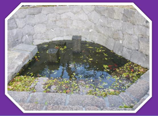 城下町の水♪_b0228113_09545896.png
