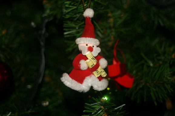 クリスマスツリーがやってきました!_e0190216_23164069.jpg