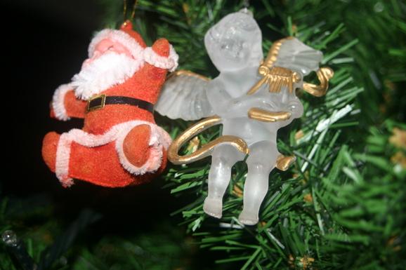 クリスマスツリーがやってきました!_e0190216_23174897.jpg
