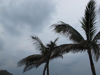 12月12日 曇ってますー_b0158746_16275881.jpg