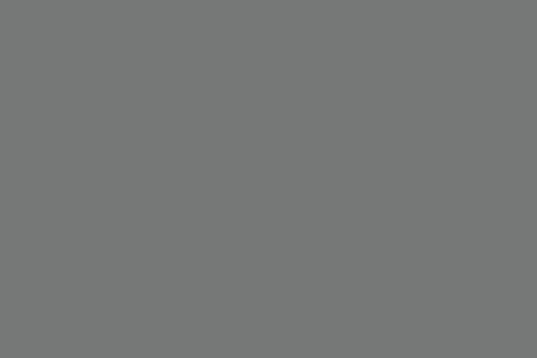 GINICHI SILK GRAY CARD 2_b0229648_122303.jpg