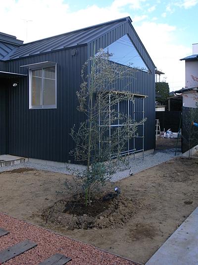 o-house(群馬県太田市)-植栽_f0064884_19245158.jpg