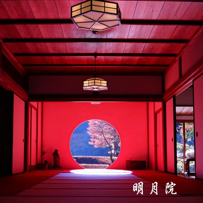鎌倉 明月院の紅葉が見頃でした_b0145398_16325472.jpg