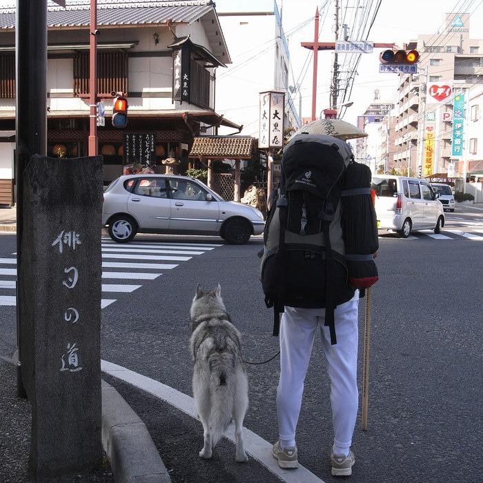 Memory of the second pilgrimage with Husky HANA II_c0049299_1231380.jpg