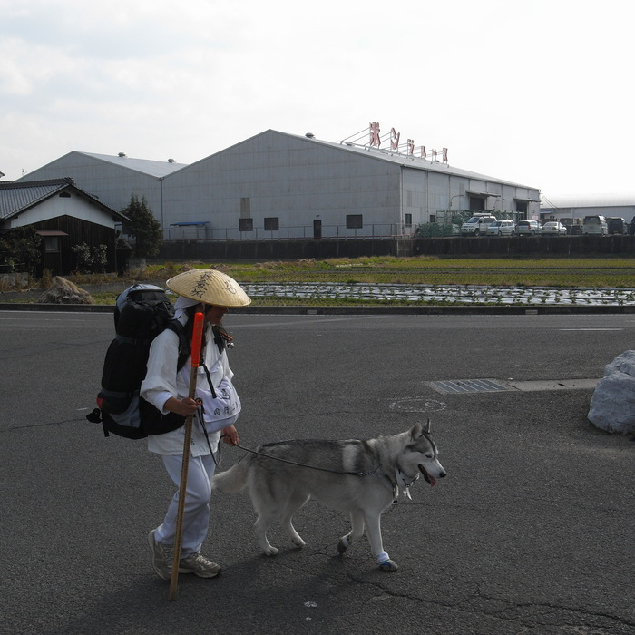 Memory of the second pilgrimage with Husky HANA II_c0049299_151404.jpg