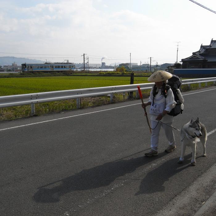 Memory of the second pilgrimage with Husky HANA II_c0049299_1515174.jpg