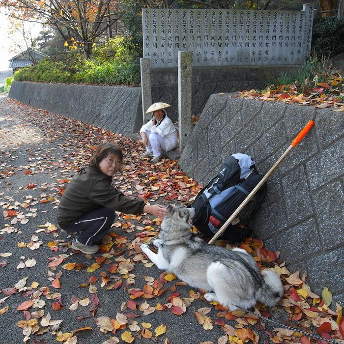 Memory of the second pilgrimage with Husky HANA II_c0049299_15161345.jpg