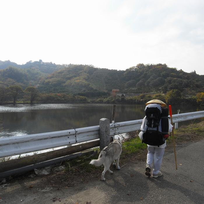 Memory of the second pilgrimage with Husky HANA II_c0049299_1517422.jpg