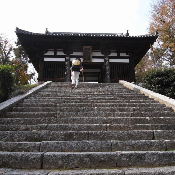 Memory of the second pilgrimage with Husky HANA II_c0049299_1518152.jpg