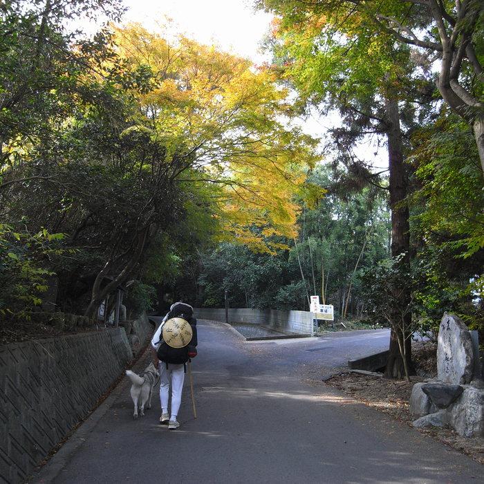 Memory of the second pilgrimage with Husky HANA II_c0049299_15185670.jpg