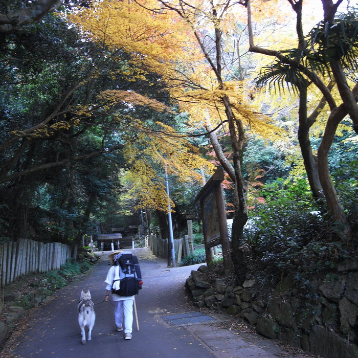 Memory of the second pilgrimage with Husky HANA II_c0049299_15193610.jpg
