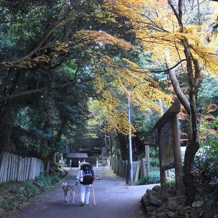 Memory of the second pilgrimage with Husky HANA II_c0049299_151950100.jpg