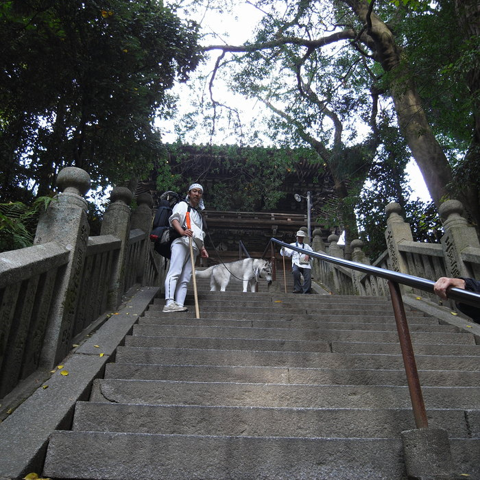 Memory of the second pilgrimage with Husky HANA II_c0049299_1520566.jpg