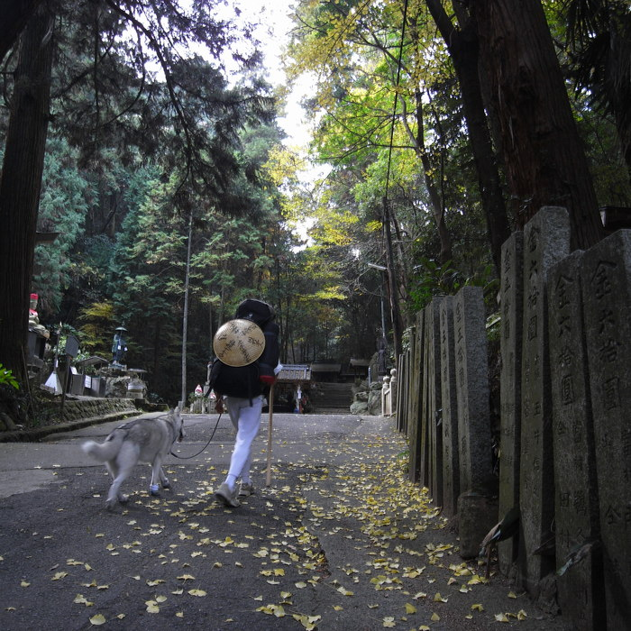 Memory of the second pilgrimage with Husky HANA II_c0049299_1520756.jpg
