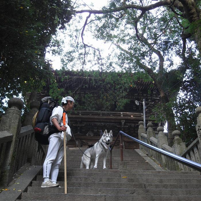Memory of the second pilgrimage with Husky HANA II_c0049299_15211051.jpg