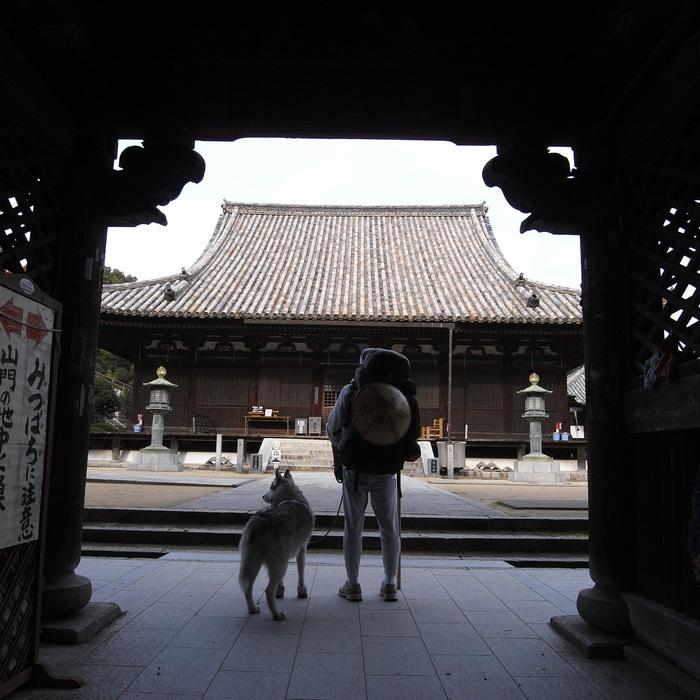 Memory of the second pilgrimage with Husky HANA II_c0049299_15212623.jpg