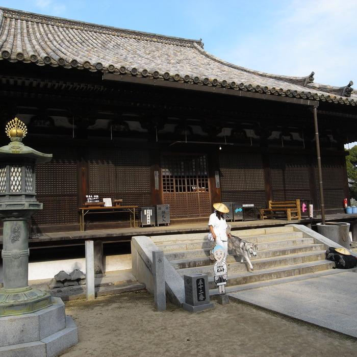 Memory of the second pilgrimage with Husky HANA II_c0049299_15214491.jpg