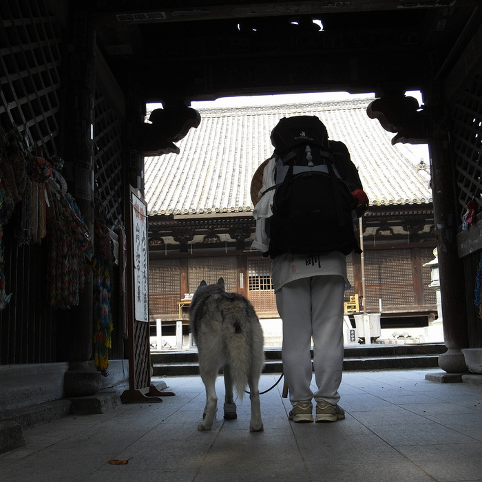 Memory of the second pilgrimage with Husky HANA II_c0049299_15221539.jpg