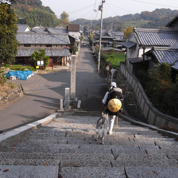 Memory of the second pilgrimage with Husky HANA II_c0049299_1522377.jpg