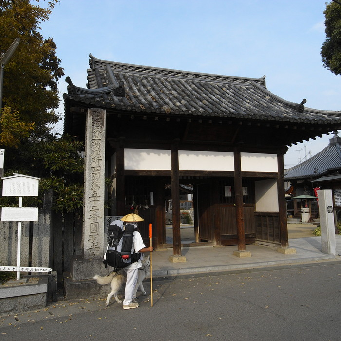 Memory of the second pilgrimage with Husky HANA II_c0049299_15231144.jpg
