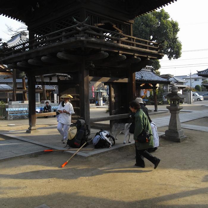 Memory of the second pilgrimage with Husky HANA II_c0049299_1526531.jpg