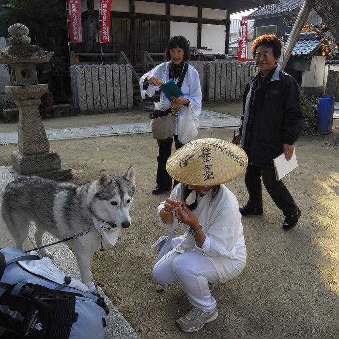 Memory of the second pilgrimage with Husky HANA II_c0049299_15275793.jpg