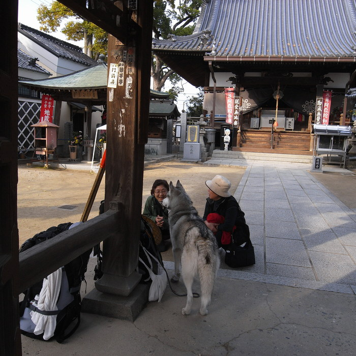 Memory of the second pilgrimage with Husky HANA II_c0049299_1528332.jpg