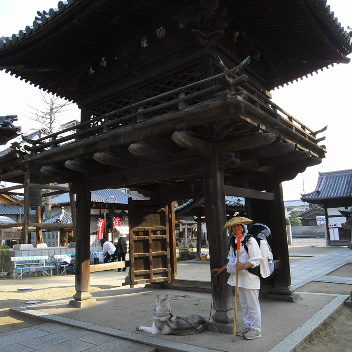 Memory of the second pilgrimage with Husky HANA II_c0049299_15283640.jpg