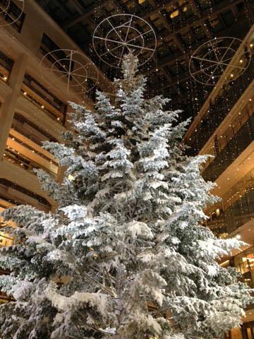 C\'est Noël !!_f0038600_22273424.jpg