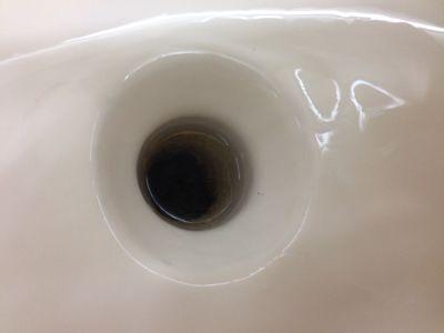 トミーと言えばトイレ掃除_b0127002_15255111.jpg