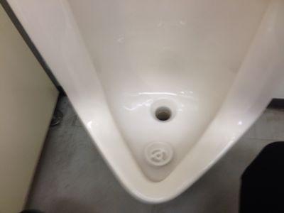 トミーと言えばトイレ掃除_b0127002_1525514.jpg
