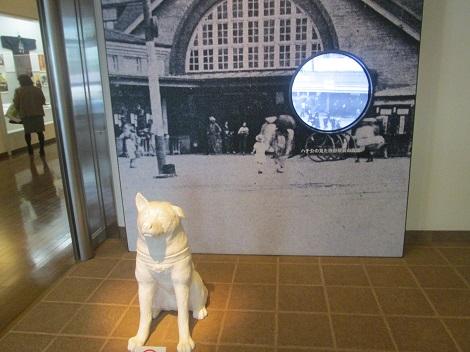白根記念渋谷区郷土博物館・文学館の企画展示_d0183174_8241287.jpg
