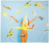 Ryan McGinley: ビーチタオル WOW Project (Works on Whatever)_c0214605_1555330.jpg
