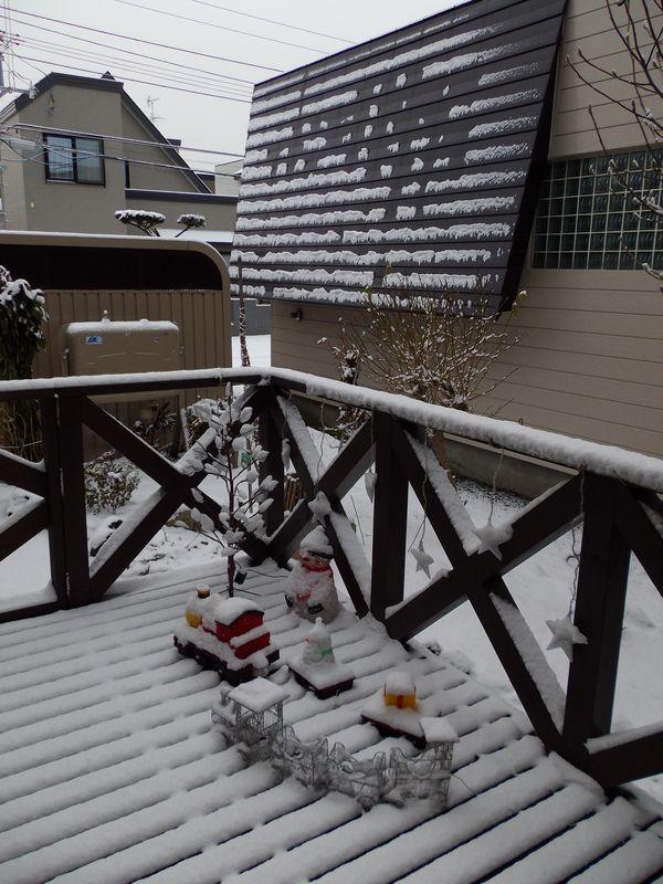 この冬初めての本格的除雪_c0025115_20332792.jpg