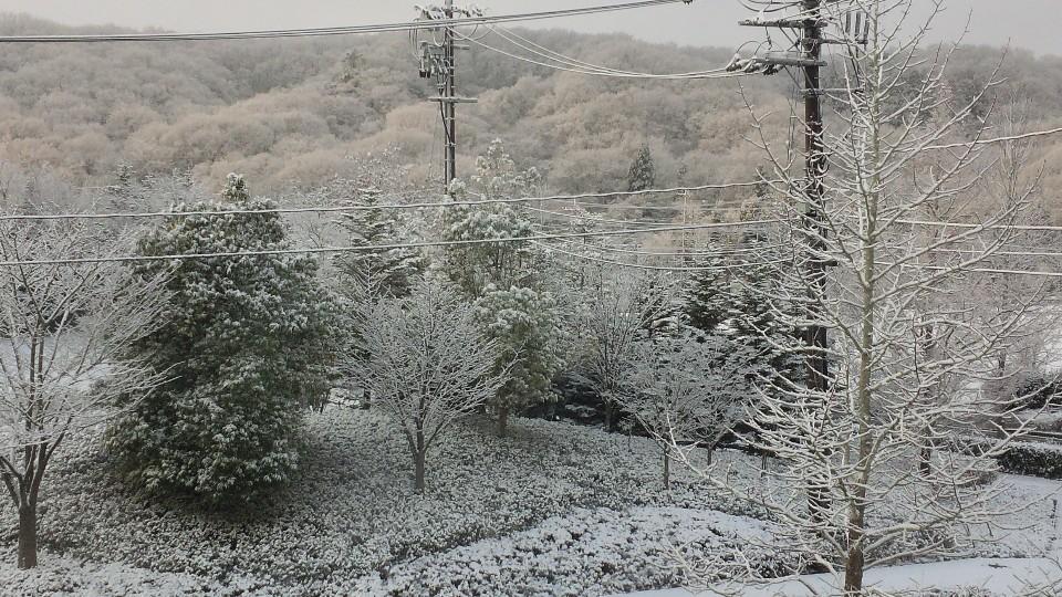 雪~~~~~~!_d0171222_13163657.jpg