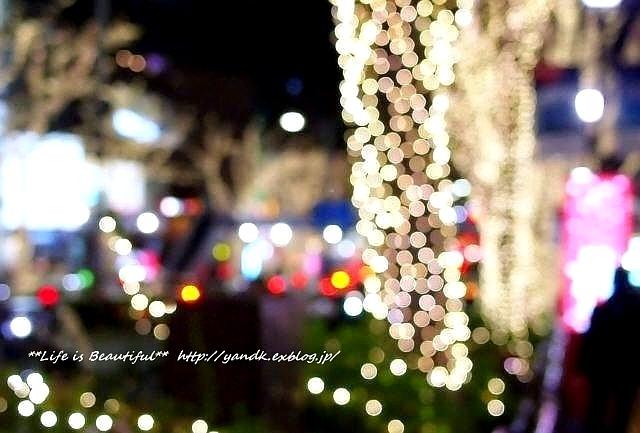 Xmas Illumination 2013*Omotesando_d0083623_21591378.jpg