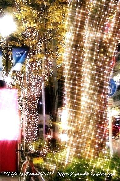 Xmas Illumination 2013*Omotesando_d0083623_21595381.jpg