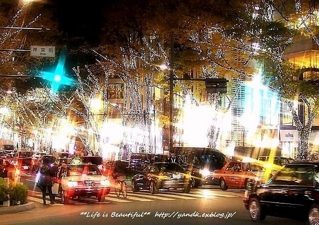Xmas Illumination 2013*Omotesando_d0083623_2201412.jpg