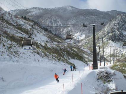 祝 草津国際スキー場オープン!_a0057828_233741.jpg